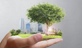 UF0570 Calificación Energética de los Edificios (Online)