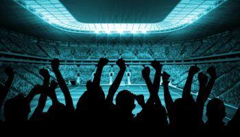 Técnico en Dirección de Entidades Deportivas (Online)
