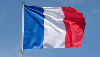 Francés Atención al Público (Online)