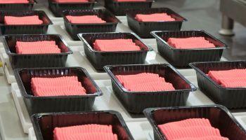 MF0298_2 Elaboración y Trazabilidad de Productos Cárnicos Industriales