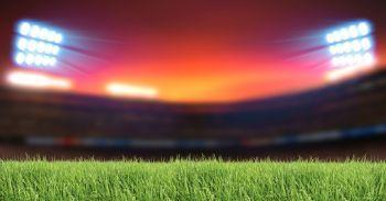 Técnico Profesional en Dirección y Gestión de Instalaciones Deportivas (Online)