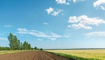 UF0016 Mantenimiento y Manejo de Invernaderos (Online)